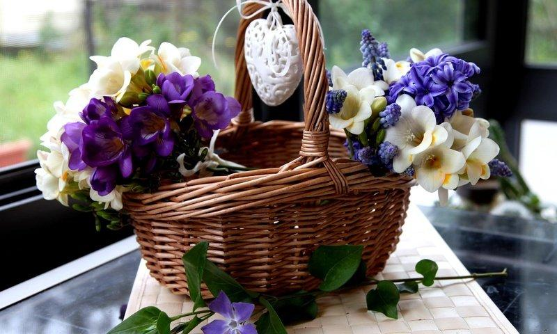 cvety-serdce-korzina-giacinty-muskari-frezia-barvinok.jpg